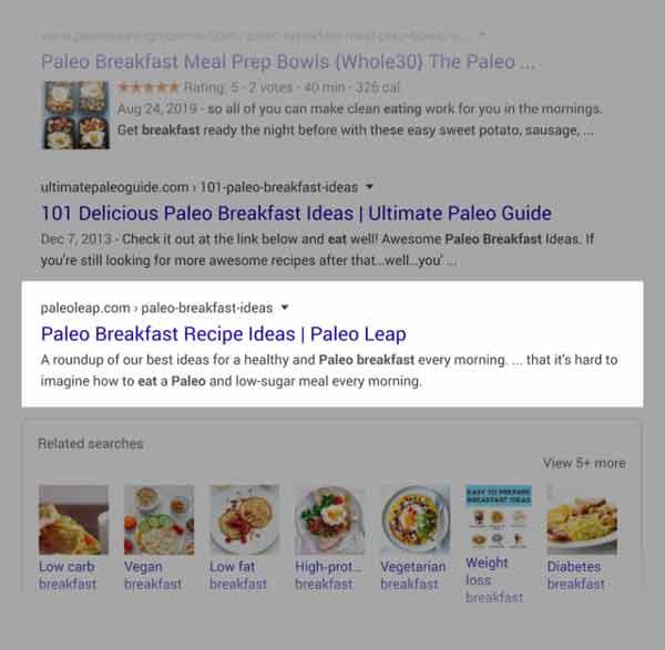 پست سایت Paleoleap در سرپ گوگل